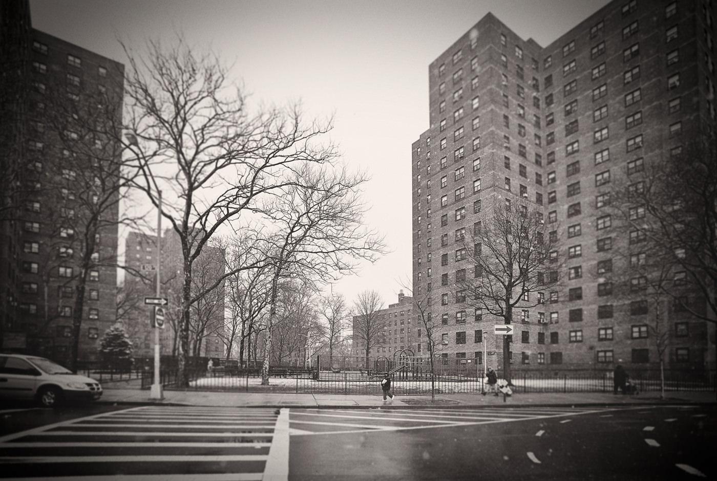 Harlem 12